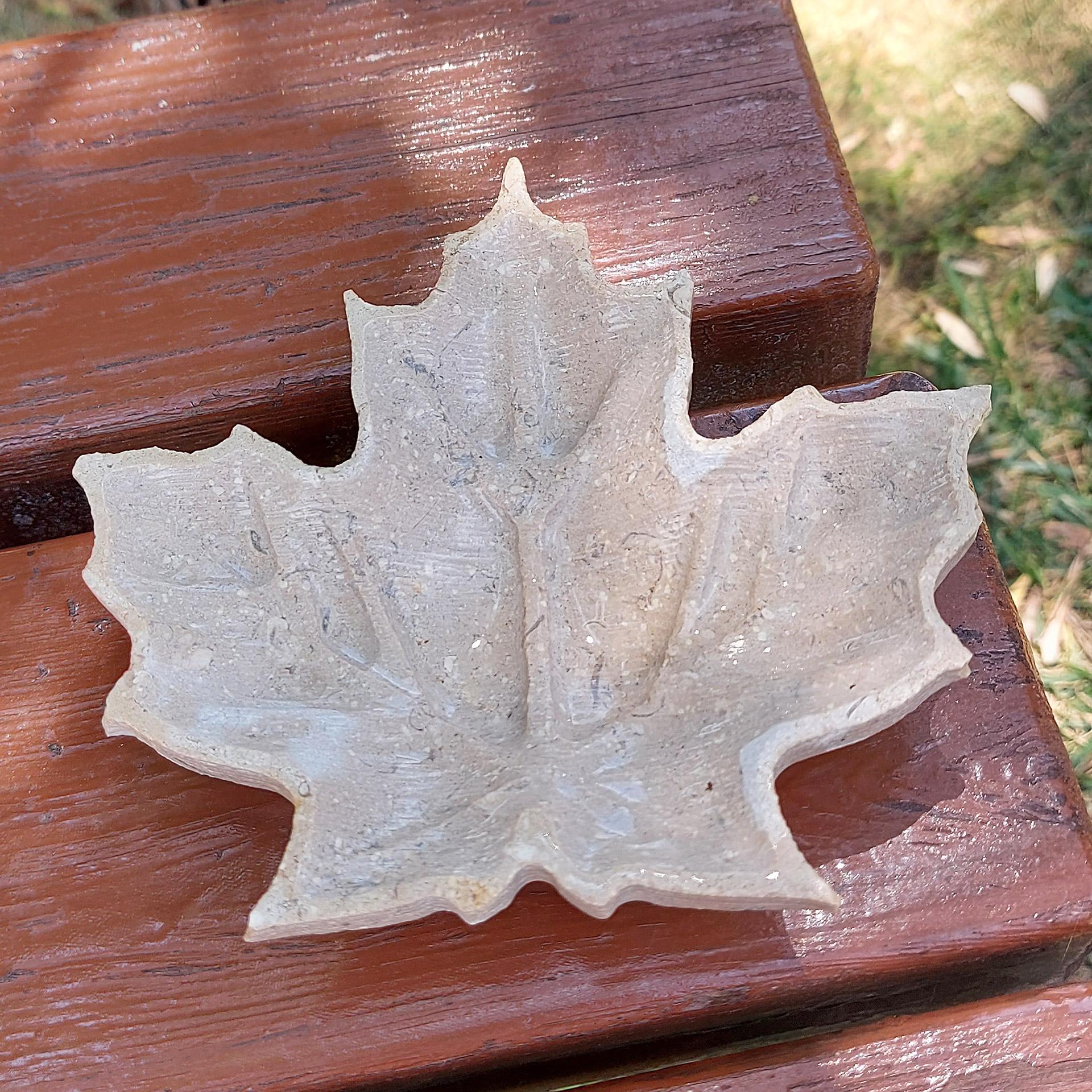Το μαρμάρινο πλατανόφυλλο Φθινόπωρο στην αυλή